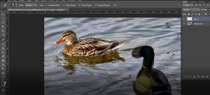 آموزش نحوه حذف سوژه از عکس